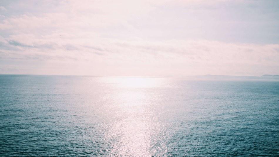Contamination of European seas continues despite some positive progress