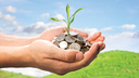 Designing tax systems for a green economy transition