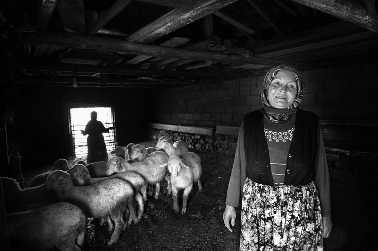 Sustainable food: 'Sheep carers' by Adil Emektar