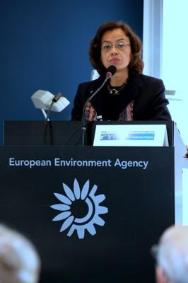 Rosario Bento, European Commission (DG CLIMA)