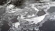 More action needed to tackle mixtures of chemicals in Europe's waters