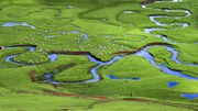 Restoring floodplains would improve state of water, ecosystems and climate protection in Europe