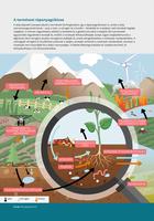 A természet tápanyagciklusa