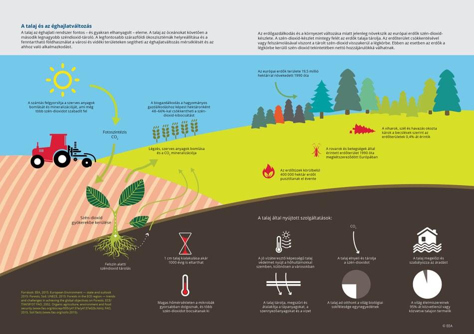 A talaj az éghajlati rendszer fontos – és gyakran elhanyagolt – eleme. A talaj az óceánokat követően a második legnagyobb széndioxid-tároló. A legfontosabb szárazföldi ökoszisztémák helyreállítása és a fenntartható földhasználat a városi és vidéki területeken segítheti az éghajlatváltozás mérséklését és az ahhoz való alkalmazkodást.