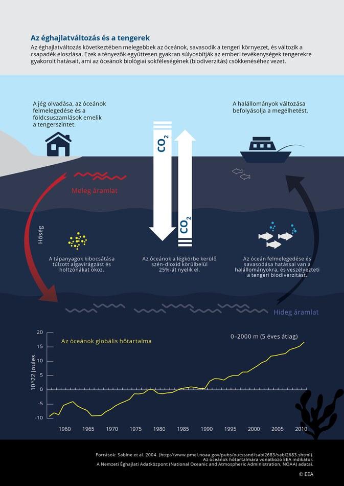 Az éghajlatváltozás következtében melegebbek az óceánok, savasodik a tengeri környezet, és változik a csapadék eloszlása. Ezek a tényezők együttesen gyakran súlyosbítják az emberi tevékenységek tengerekre gyakorolt hatásait, ami az óceánok biológiai sokféleségének (biodiverzitás) csökkenéséhez vezet.