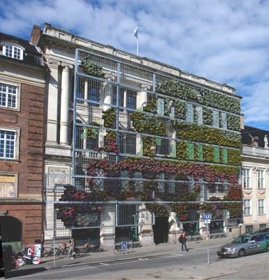 Living facade in full bloom