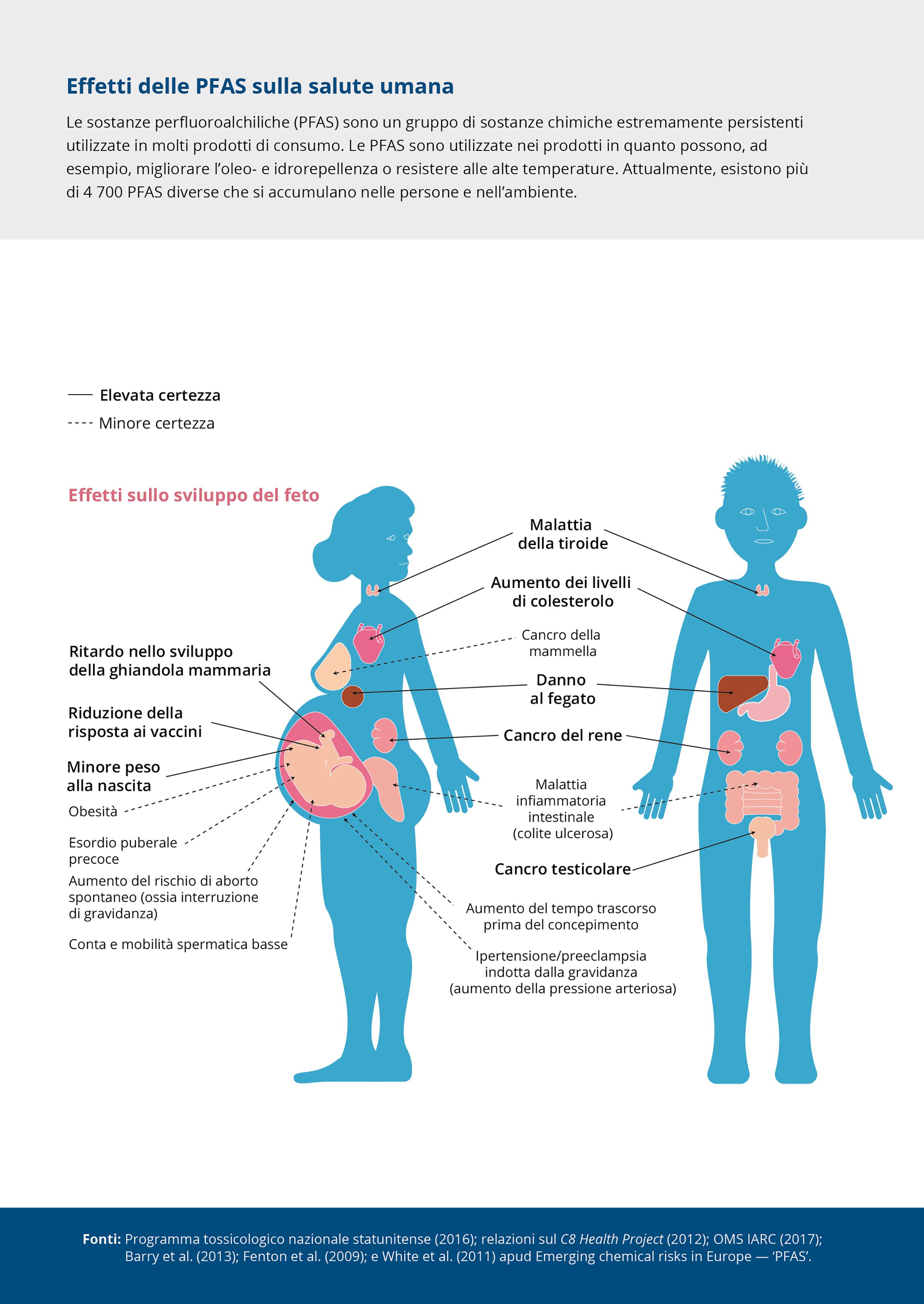 Effetti delle PFAS sulla salute umana