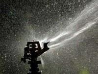 Maistui skirtiems pasėliams drėkinti sunaudojama pavojingai daug vandens