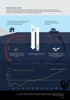 Klimato kaita ir jūros