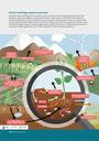 Dirvožemis atlieka reikšmingą vaidmenį gamtos cikluose, taip pat ir maisto medžiagų apykaitoje, kurios metu dirvožemio organinės medžiagos – anglis, azotas ir fosforas – absorbuojamos į dirvožemį ir jame saugomos. Dirvožemyje gyvenantys organizmai suskaido organinius junginius, kaip antai lapus ir šaknis, į smulkesnes dalis; tada jomis gali pasinaudoti augalai. Kai kurios dirvožemio bakterijos atmosferos azotą paverčia mineraliniu azotu, kuris būtinas augalams augti. Su trąšomis augalai gauna jų augimui būtinų azoto ir fosfatų, tačiau jie įsisavina ne visą jų kiekį. Perteklius gali patekti į upes ir ežerus, paveikti šių vandens ekosistemų gyvenimą.