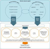 The constituents of marine natural capital in a socio‑economic context