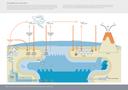 The global mercury cycle
