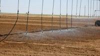 Ilma għall-agrikoltura