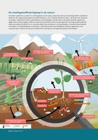 De voedingsstoffenkringloop in de natuur
