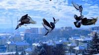 Verbetering van de luchtkwaliteit leidt tot verbetering van de gezondheid en productiviteit van mensen