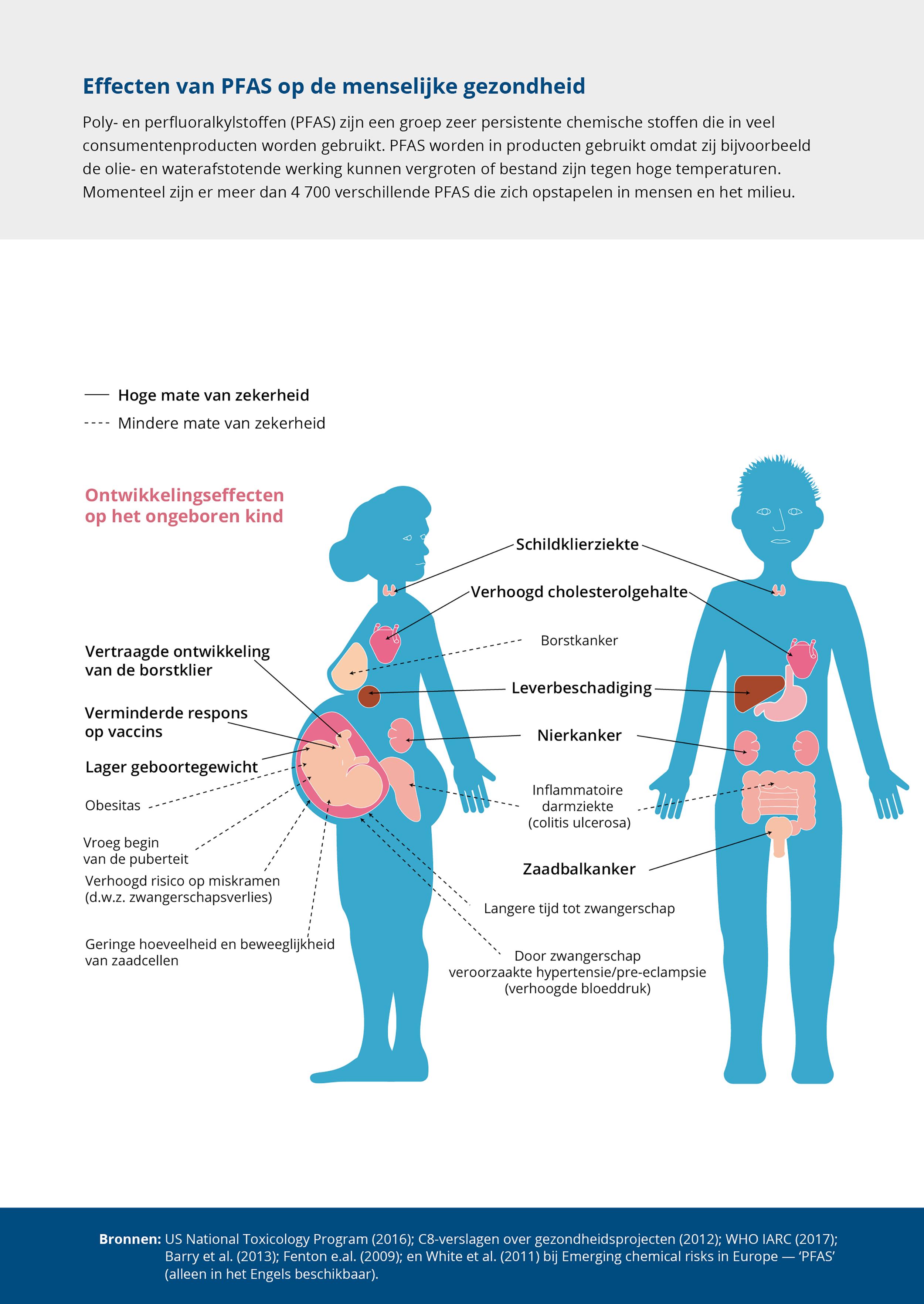 Effecten van PFAS op de menselijke gezondheid