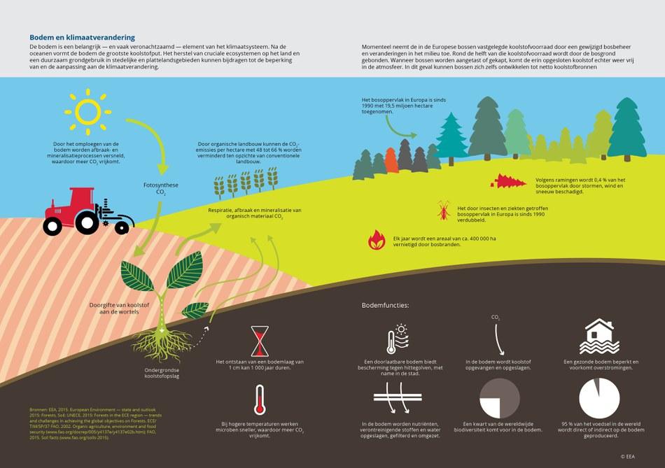 De bodem is een belangrijk — en vaak veronachtzaamd — element van het klimaatsysteem. Na de oceanen vormt de bodem de grootste koolstofput. Het herstel van cruciale ecosystemen op het land en een duurzaam grondgebruik in stedelijke en plattelandsgebieden kunnen bijdragen tot de beperking van en de aanpassing aan de klimaatverandering.