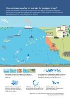 Hoe ontstaat zeeafval en wat zijn de gevolgen ervan?