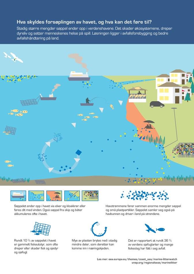 Stadig større mengder søppel ender opp i verdenshavene. Det skader økosystemene, dreper dyreliv og setter menneskenes helse på spill. Løsningen ligger i avfallsforebygging og bedre avfallshåndtering på land.