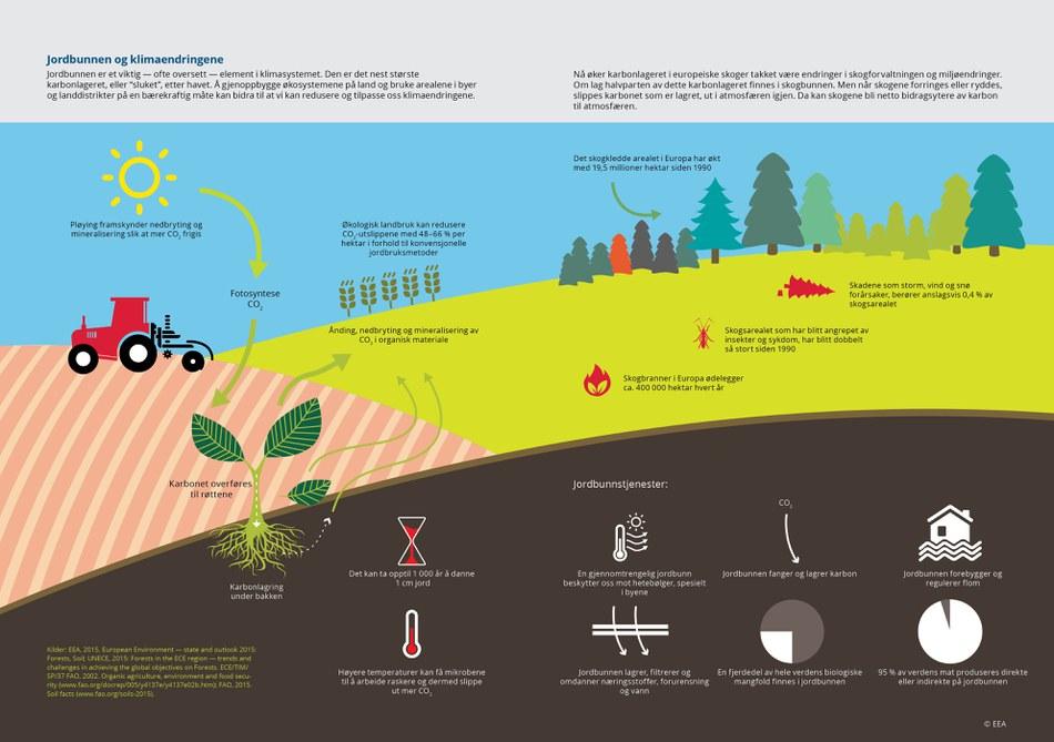 """Jordbunnen er et viktig — ofte oversett — element i klimasystemet. Den er det nest største karbonlageret, eller """"sluket"""", etter havet. Å gjenoppbygge økosystemene på land og bruke arealene i byer og landdistrikter på en bærekraftig måte kan bidra til at vi kan redusere og tilpasse oss klimaendringene."""