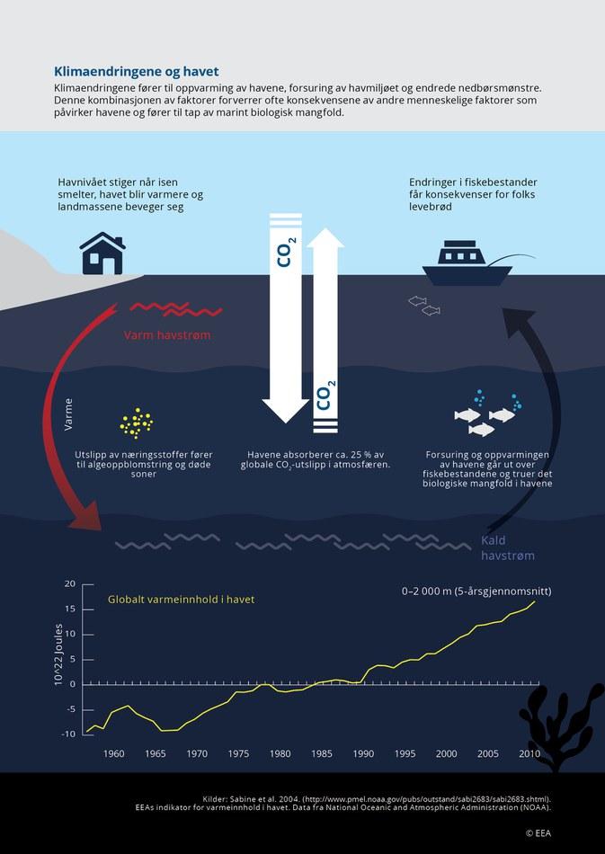 Klimaendringene fører til oppvarming av havene, forsuring av havmiljøet og endrede nedbørsmønstre. Denne kombinasjonen av faktorer forverrer ofte konsekvensene av andre menneskelige faktorer som påvirker havene og fører til tap av marint biologisk mangfold.