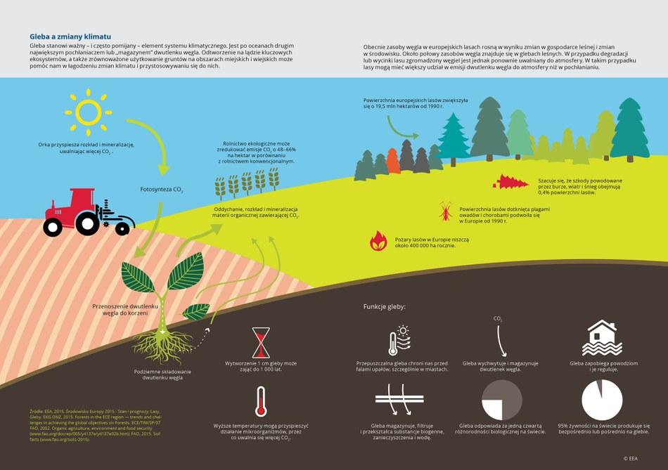 """Gleba stanowi ważny – i często pomijany – element systemu klimatycznego. Jest po oceanach drugim największym pochłaniaczem lub """"magazynem"""" dwutlenku węgla. Odtworzenie na lądzie kluczowych ekosystemów, a także zrównoważone użytkowanie gruntów na obszarach miejskich i wiejskich może pomóc nam w łagodzeniu zmian klimatu i przystosowywaniu się do nich."""