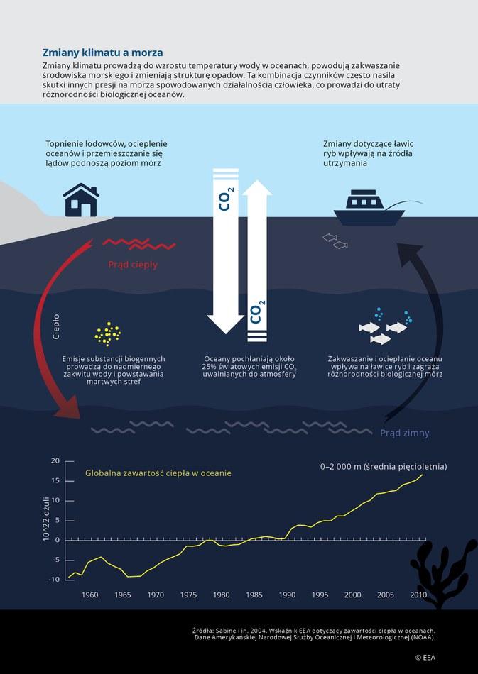 Zmiany klimatu prowadzą do wzrostu temperatury wody w oceanach, powodują zakwaszanie środowiska morskiego i zmieniają strukturę opadów. Ta kombinacja czynników często nasila skutki innych presji na morza spowodowanych działalnością człowieka, co prowadzi do utraty różnorodności biologicznej oceanów.