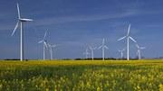 Energias renováveis: a chave para um futuro da Europa com baixas emissões de carbono