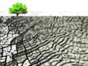 Se o poço secar - A adaptação às alterações climáticas e a água