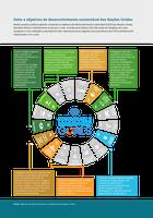Solos e objetivos de desenvolvimento sustentável das Nações Unidas