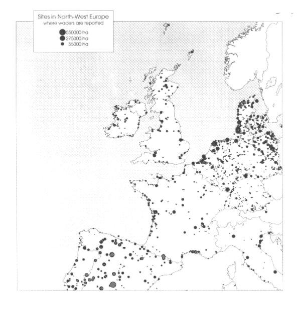 map.jpg (58316 bytes)