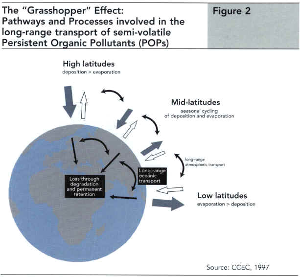 The Grasshopper effect