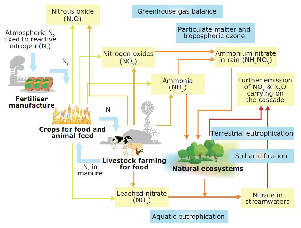 Cascade Natural Gas Bellingham Bill Pay