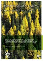 Europe's forests at a glance — a breath of fresh air in a changing climate