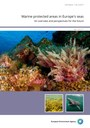 Marine protected areas in Europe's seas — An overview and perspectives for the future