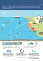 Care sunt sursele de deşeuri marine şi care este impactul acestora asupra mediului?
