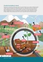 Circuitul nutrienților în natură