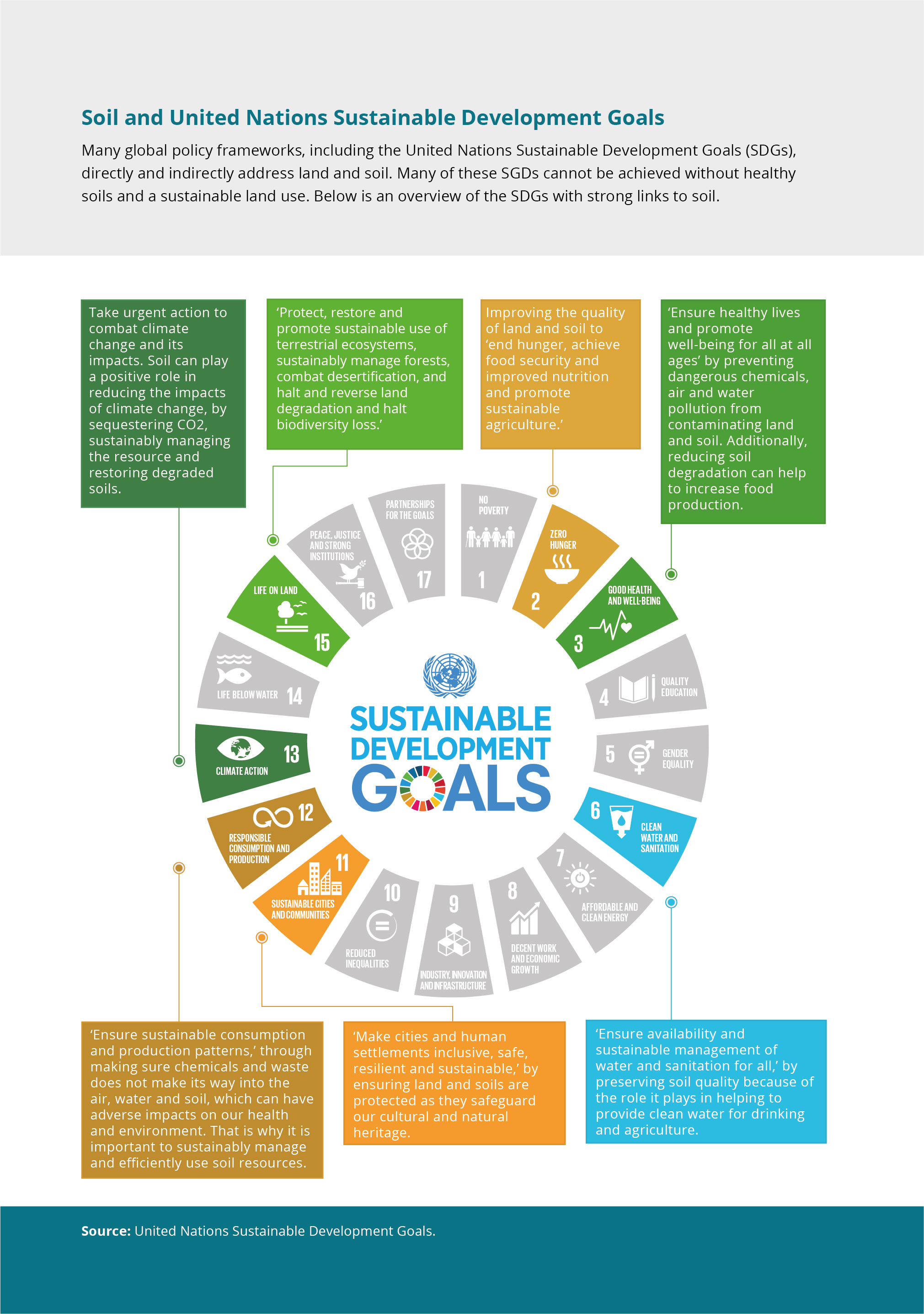 Many global policy frameworks, including the United Nations Sustainable Development Goals (SDGs),directly and indirectly address land and soil. Many of these SGDs cannot be achieved without healthysoils and a sustainable land use. Below is an overview of the SDGs with strong links to soil.