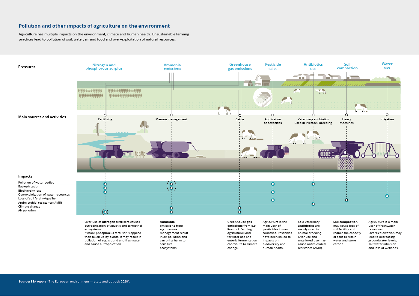 Pollution and other impacts of agriculture on the environment