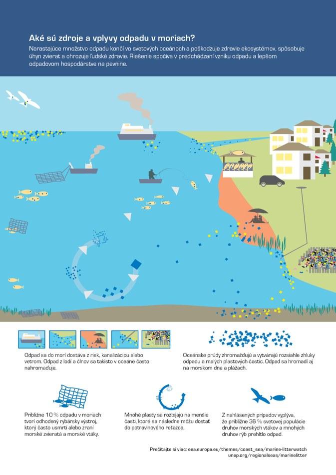 Narastajúce množstvo odpadu končí vo svetových oceánoch a poškodzuje zdravie ekosystémov, spôsobuje úhyn zvierat a ohrozuje ľudské zdravie. Riešenie spočíva v predchádzaní vzniku odpadu a lepšom odpadovom hospodárstve na pevnine.
