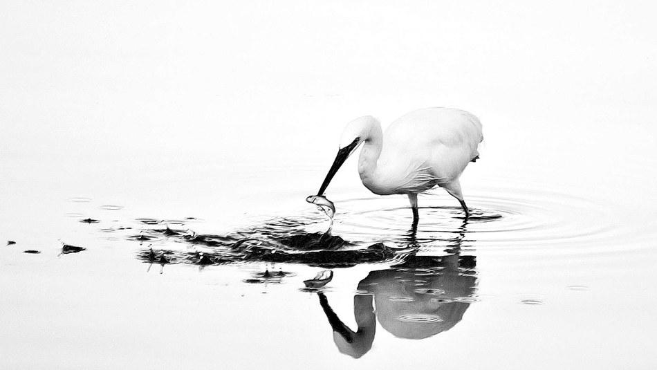 Fotografija©Giovanni Cultrera, Okolje in jaz/EEA