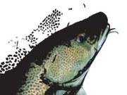 Riba na suhem - Upravljanje morja ob spreminjajočem se podnebju