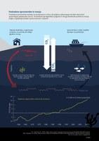 Podnebne spremembe in morja