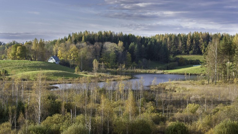Estonia country briefing  - The European environment — state and outlook 2015