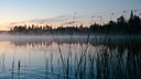 Finland country briefing  - The European environment — state and outlook 2015
