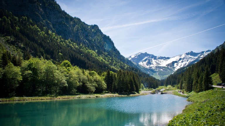 Liechtenstein country briefing  - The European environment — state and outlook 2015