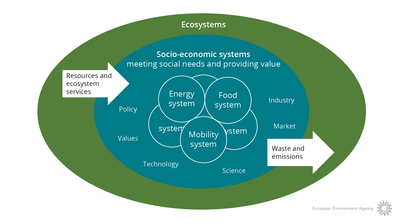 Ecosystems and socio-economic systems