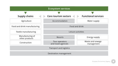 Components of the tourism system