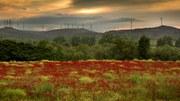 Mark och jord: mot en hållbar användning och förvaltning av dessa livsnödvändiga resurser