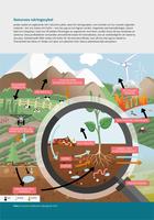 Naturens näringscykel